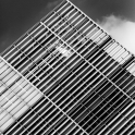 architecture-7